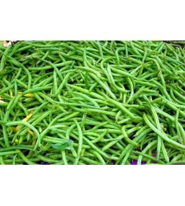 plateau de 5 kg haricots vert